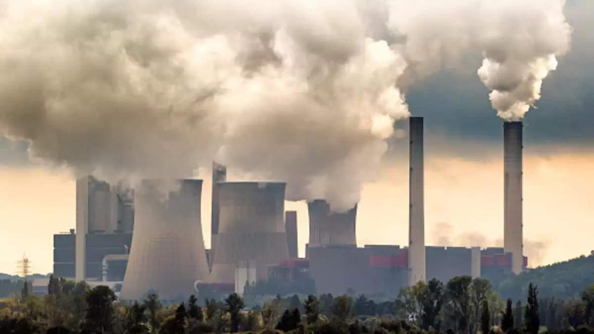 coal short